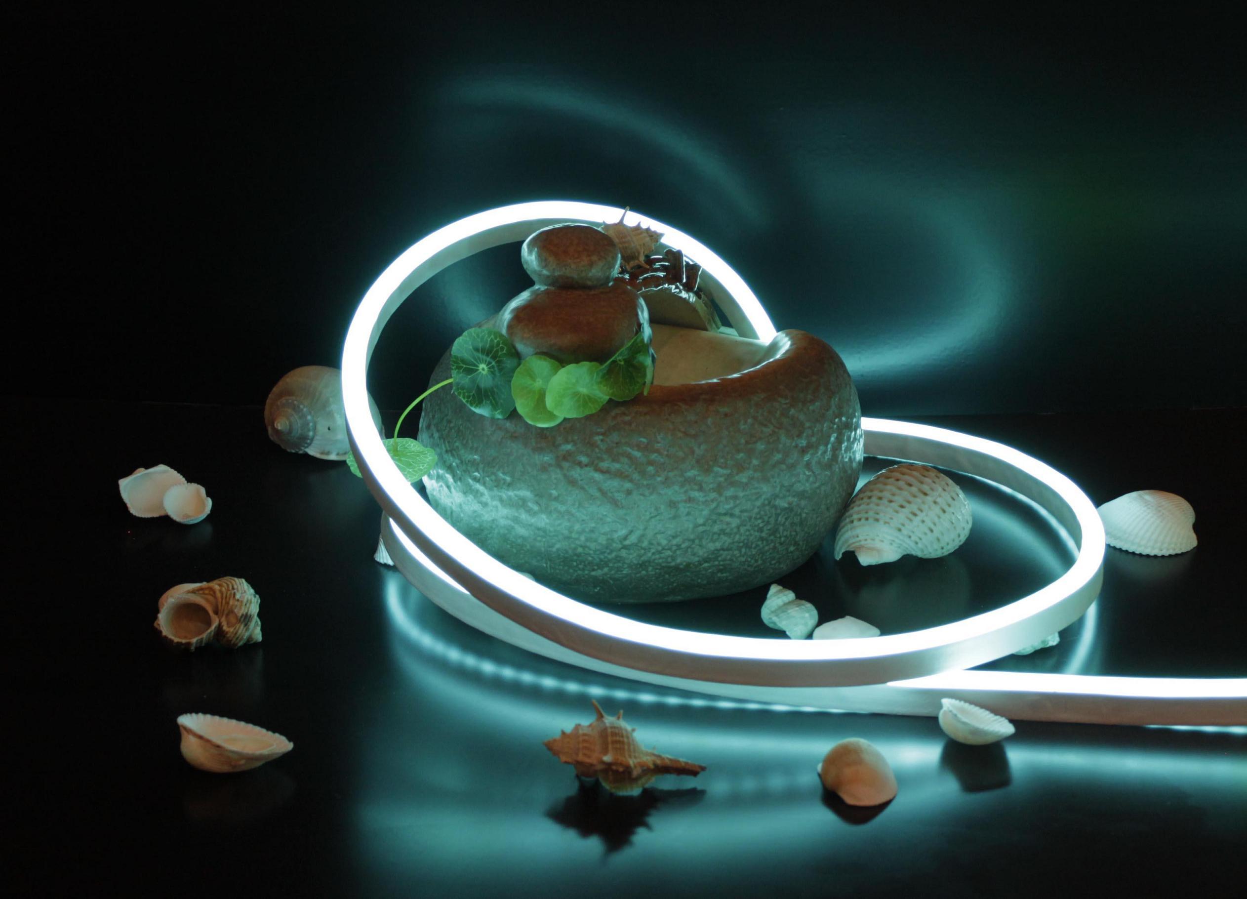 Светодиодный неон NEON FLEX PROLUM - что это такое?